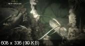 Речные монстры / River monsters - 14 серий (2009-2010) SATRip