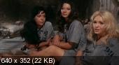 99 женщин / 99 Women (1969) DVDRip