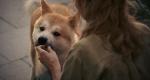 Хатико: Самый верный друг (2009) BDRip 1080p/720p