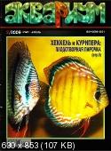 http://i2.fastpic.ru/thumb/2010/0305/b7/d4698faa5daf4ffa42fcbce8e4b96eb7.jpeg