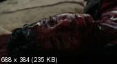 Повелитель бури / The Hurt Locker (2008/HDRip)