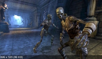 Dragon Age: Origins - Awakening (2010/ENG/MULTI8)