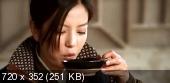 14 клинков  (2010) DVDRip